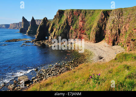 Duncansby Stacks pinnacles in the morning light, John o'Groats, Caithness, Sutherland and Easter Ross, Highlands, - Stock Photo