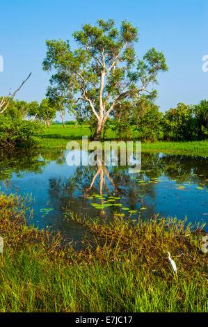 Little lake, Kakadu National Park, Northern Territory, Australia - Stock Photo