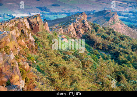 Evening Light on The Roaches & Hen Cloud, Peak District National Park, Staffordshire, England, UK - Stock Photo