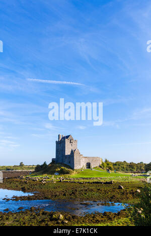 Dunguaire Castle, a 16thC Tower House near Kinvarra, Galway Bay, County Galway, Republic of Ireland - Stock Photo