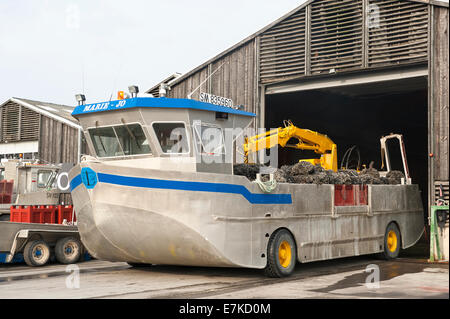 Amphibious boat used for harvesting mussels at Le Vivier-sur-Mer in the Mont St Michel Bay, Bretagne, France - Stock Photo
