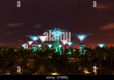 Gardens by the Bay in Singapore at night. - Stock Photo