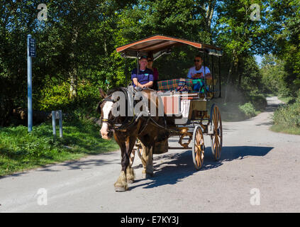 A horse and carriage 'Jaunting Car' ride near Ross Castle in Killarney National Park, County Kerry, Republic of - Stock Photo