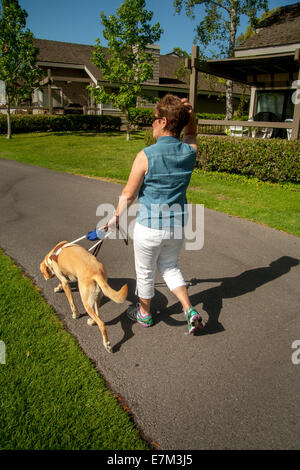 Blind Dog Park City