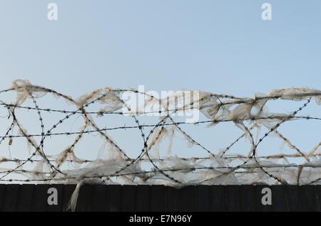 Galvanised high security razor wire and barbed wires deterrent to slow down climbing over walls with mass of shredded - Stock Photo