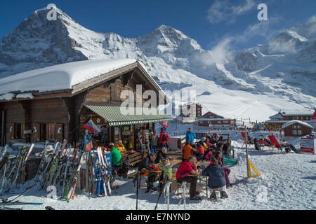 Ski, ski tourist, Kleine Scheidegg, Eiger, monk, Mönch, Jungfrau, mountain, mountains, ski, skiing, Carving, winter, - Stock Photo