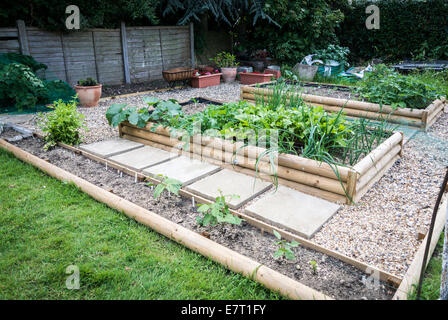 Garden vegetable patch depicting square foot gardening - Stock Photo