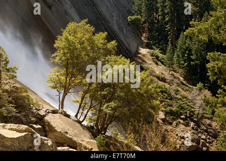 CALIFORNIA - Trees growing along the sides of Nevada Fall on the Merced River from the Mist Trail in Yosemite National - Stock Photo