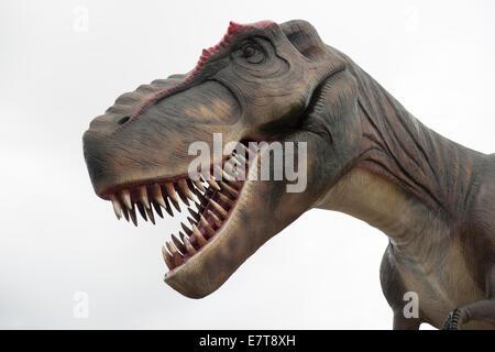 Boris Dinosaur And Some Friends