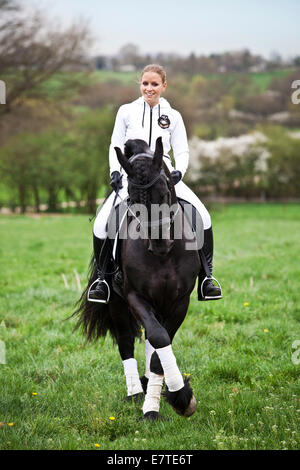 Friesian or Frisian horse, stallion with a female rider on horseback on a meadow, classical dressage, half pass - Stock Photo