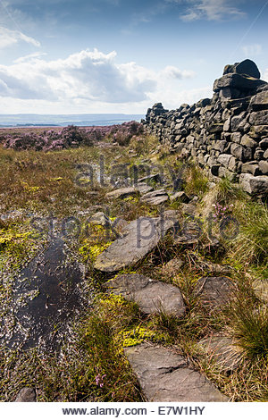 View from Ilkley Moor ( Rombalds Moor ) towards the Aire Valley / Airedale . West Yorkshire England UK - Stock Photo