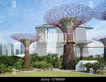 Gardens by the Bay in Singapore - Stock Photo