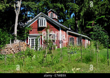 West Cornwall, Connecticut: small wooden house with rooftop cupola next to a field of staked tomato plants - Stock Photo