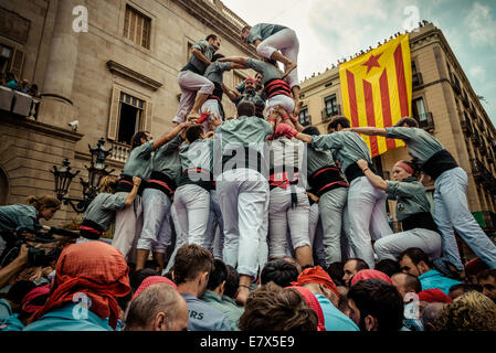 Barcelona, Spain. 24th Sep, 2014. The 'Castellers de Sants' build a human tower during the city festival 'La Merce 2014' in front of the town hall of Barcelona Credit:  matthi/Alamy Live News