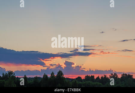 Sunset rays on evening cloudy sky and green forest. - Stock Photo
