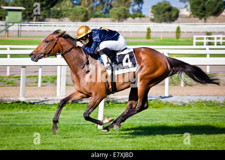 Rome, Italy, 01 May, 2014: Jockey rides horse during race one. - Stock Photo