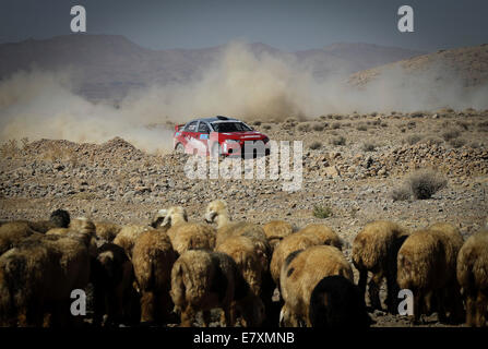 Tehran, Iran. 25th Sep, 2014. Lebanese driver Roger Feghali competes during the first stage of the Middle East Rally - Stock Photo
