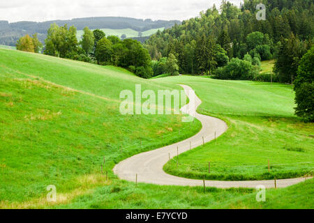 winding country road between green fields in the mountains - Stock Photo
