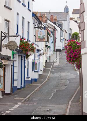 Steep winding road in the village of Appledore in North Devon UK which plays host to an acclaimed annual literary - Stock Photo