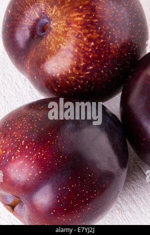 Fresh ripe red juicy appetizing plum close up view with the stalk facing the camera in a concept of healthy eating - Stock Photo
