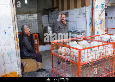 Chicken shop at the livestock bazaar of Sulaymaniyah (Slemani), Iraqi Kurdistan province, Iraq. - Stock Photo