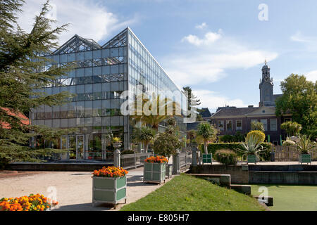 Winter garden in the Hortus Botanicus with the university tower in the background in Leiden, Netherlands - Stock Photo
