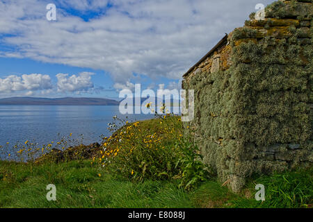 Derelict crofters cottage in Orkney, Scotland - Stock Photo