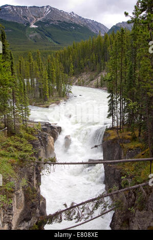 Sunwapta Falls, Jasper National Park, Alberta, Canada - Stock Photo