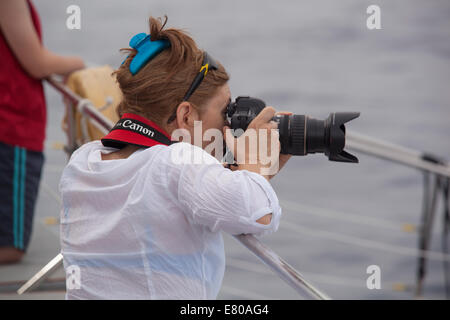 Dolphin watching boat trip - Stock Photo