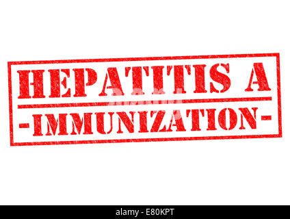 HEPATITIS A IMMUNIZATION red Rubber Stamp over a white background. - Stock Photo