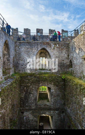Tourists waiting to kiss the Blarney Stone, Blarney Castle, near Cork, County Cork, Republic of Ireland - Stock Photo
