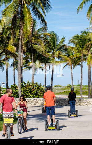 Miami Beach Florida Ocean Drive Lummus Park Serpentine Trail bikers bicycles riding man palm trees man woman couple - Stock Photo