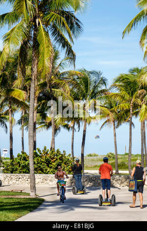 Miami Beach Florida Ocean Drive Lummus Park Serpentine Trail bikers bicycles riding man palm trees bicycle riding - Stock Photo