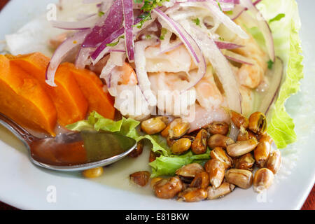 Peruvian Food North Miami Beach