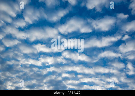 Cirrocumulus clouds, small fluffy clouds, Germany - Stock Photo