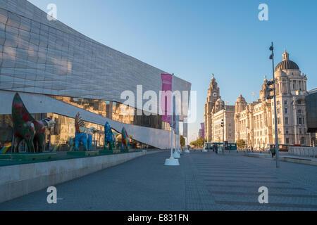 Musuem of Liverpool (left) and Three Graces buiildings, Pier Head, Liverpool, Merseyside, England, UK - Stock Photo
