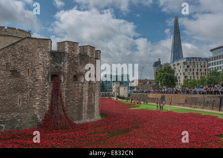 Blood Swept Lands and Seas of Red - The installation of ceramic poppies at the Tower of London - Stock Photo