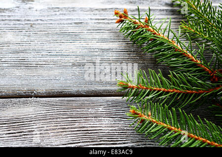 Christmas pine branch on gray wooden boards. Top view - Stock Photo
