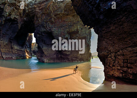 Spain, Galicia: Small dog in a cave looking to the rock arcs at Cathedral´s beach - Stock Photo