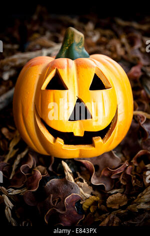 Jack-o-lantern and dry leaves, Halloween concept - Stock Photo