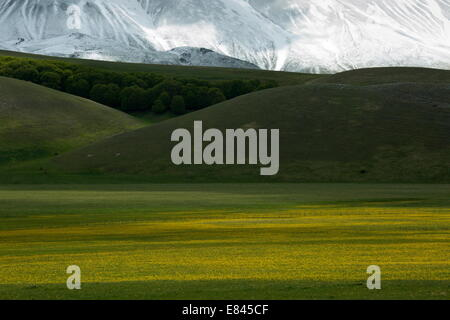 The Piano Grande- a large flat inwardly-draining plain - in spring, Monti Sibillini National Park, Italy. - Stock Photo