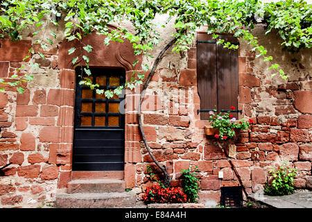 door with vines, collonges la rouge - Stock Photo