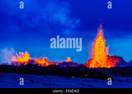 Lava fountains at the Holuhraun Fissure eruption near the Bardarbunga Volcano, Iceland. - Stock Photo