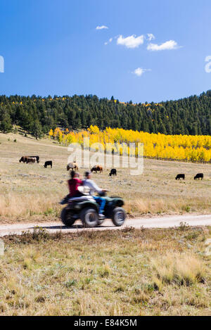 Tourists on ATV's enjoy fall foliage & autumn colors, Aspen Ridge, Central Colorado, USA - Stock Photo