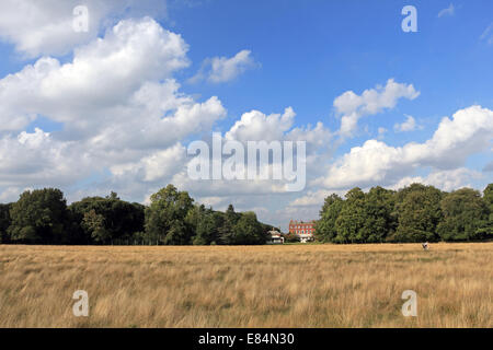 Bushy Park, SW London, England, UK. 30th September 2014. Fair weather clouds and blue skies in Bushy Park as the - Stock Photo