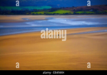 Lonesome Man walking on a sandy beach at Portmeirion - location for the 1960s cult film 'The Prisoner', Gwynedd, - Stock Photo