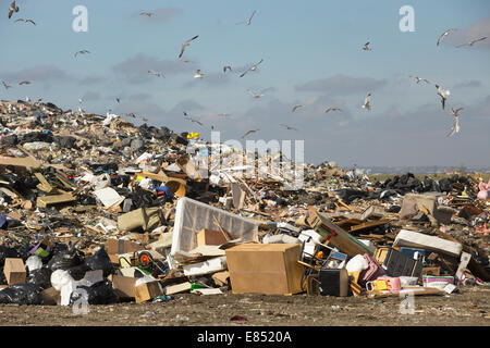 Active landfill cell at Shepard Waste Management Facility. - Stock Photo