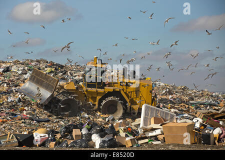 Trashmaster moving garbage in an active landfill cell at Shepard Waste Management Facility. - Stock Photo