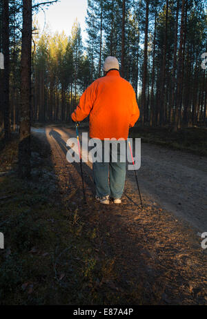 Elderly senior woman standing in the forest with Nordic walking poles , Finland