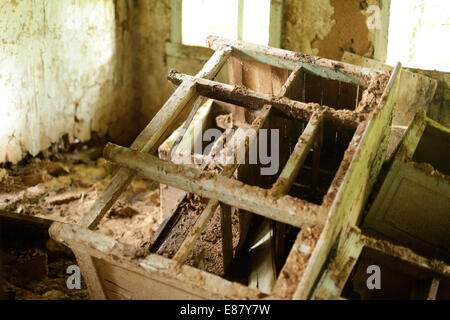The decayed house 28 years after Chernobyl Disaster. Belarus, the most polluted country, is going to build its first - Stock Photo